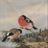 Thumbnail image for Bukowskis Helsingfors  ART & ANTIQUES HELSINKI  auktion online 12  December